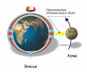 Притяжение земных вод к Луне