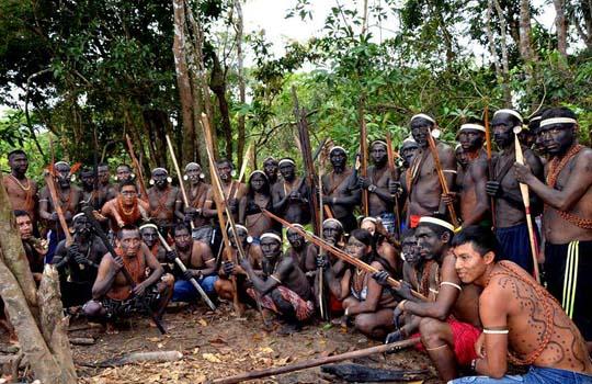 Племя корубо