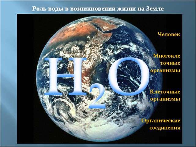 Роль воды на планете Земля