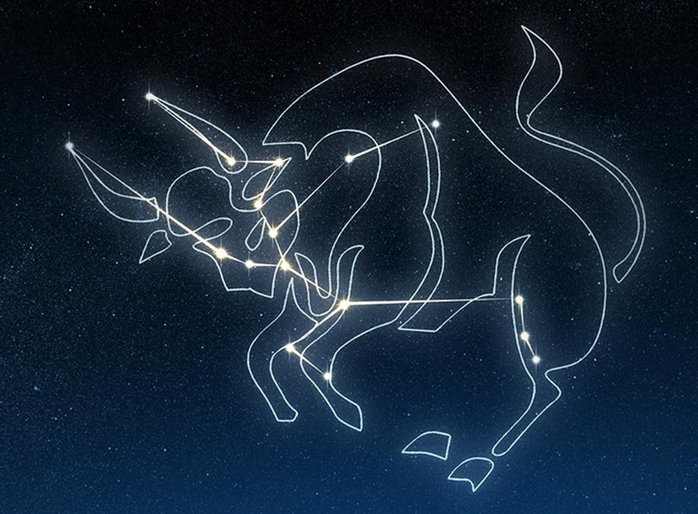 Телец созвездие